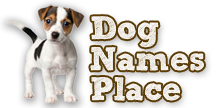 dognamesplace.com Logo