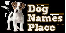 dognamesplace.com Logo